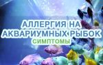 Аллергическая реакция на аквариумных рыбок и корм для них