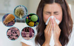 Крем от аллергии при беременности: рекомендации к лечению, применение